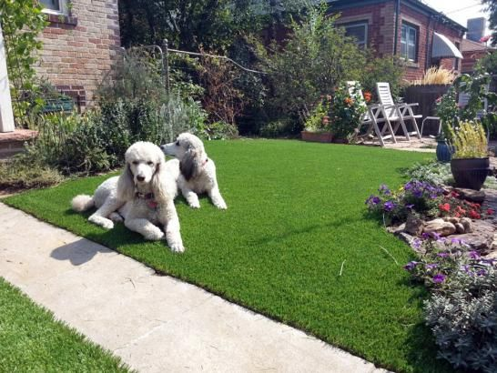 Artificial Grass Photos Synthetic Lawn Horseshoe Bay Texas Fake Grass For Dogs Front Yard Design Synthetic Lawn Artificial Grass For Dogs Artificial Lawn