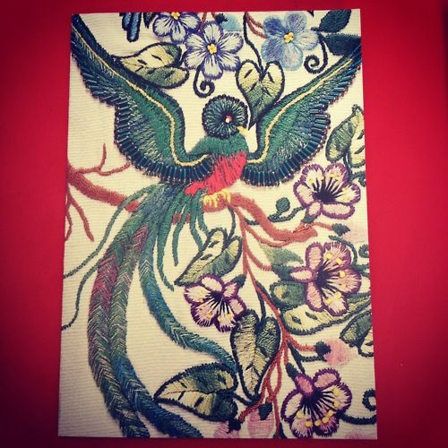 Our biggest inspiration yet - the Quetzal!