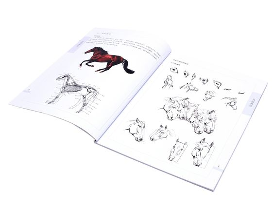 Sumi-e horse drawings #asian #artwork