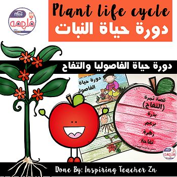 Plant Life Cycle Book كتيب قصة دورة حياة النباتات الفاصوليا والتفاح Plant Life Cycle Life Cycles Life Cycle Books