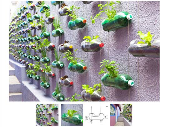 Upcycling 2 liter bottles for wall plantings.