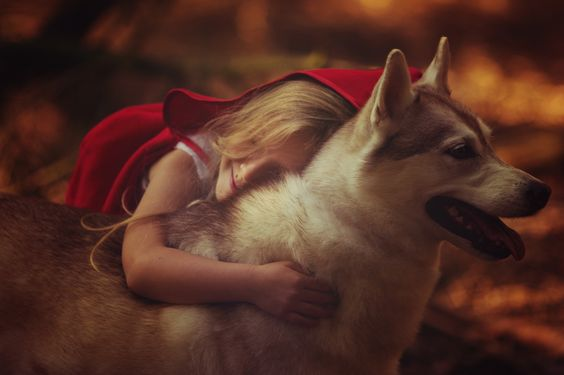 Red Riding Hood by Dorota Nowak on 500px