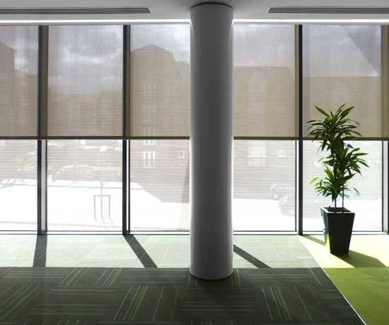 Manual Sustainability And Shades On Pinterest