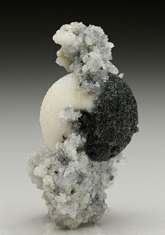 Something of a classic from Herja Mine, Romania are the 'halfbreed' specimens of white spheres of Calcite included on one side by black Boulangerite. Crystal Classics Minerals