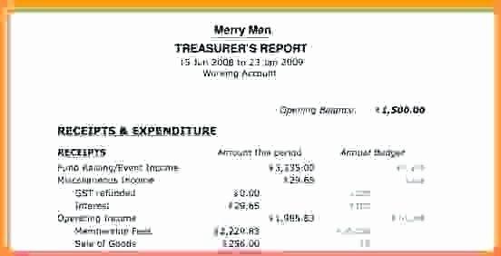 Non Profit Treasurer Report Template Unique Non Profit Treasurer Report Template Business Treasurers S In 2021 Report Template Business Template Templates