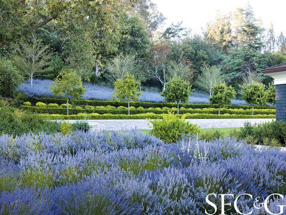Andrea Cochran Transforms the Grounds of an Atherton Property into a Sublime Formal Garden: