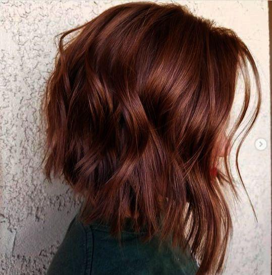 Hair Salon Near Me Now Next Hairless Cat Goblin Their Hairspray Good Morning Baltimore Thick Hair Styles Trendy Hair Color Curly Hair Trends