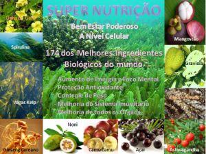Avaliação Nutricional Gratis