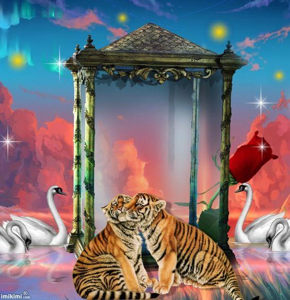 3 Wildlife/Animals by Horror02 - imikimi.com