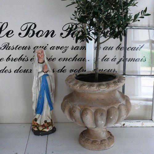 Krukke, have, sommer, oliventræ, fransk vintage landstil, potter ...