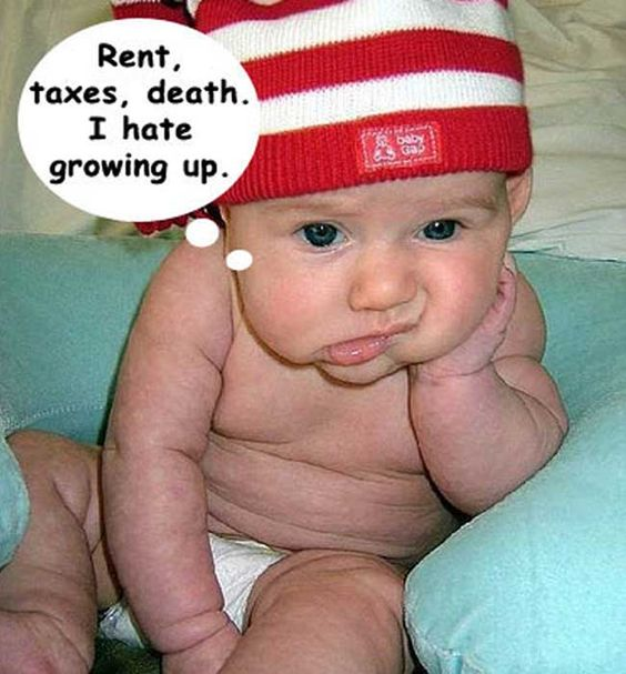 funny baby pics  software