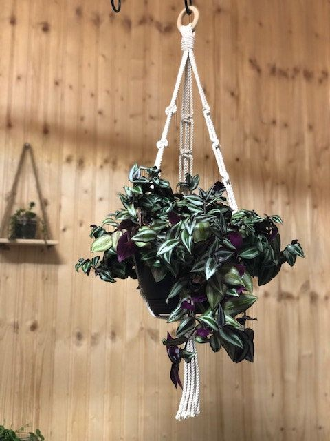 Macrame Plant Hanger Suitable For 7 9 Inch Pot Or Bowl Made In Usa In 2020