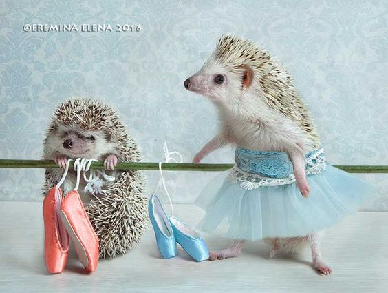 First ballet lesson by Elena Eremina on 500px: