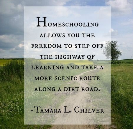 Homeschooling allows you the freedom to step off the highway of learning for a scenic route: