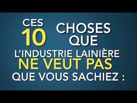 Les animaux ne sont pas des marchandises et voici 10 moyens de leur venir en aide   Actualités   PETA France