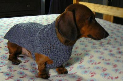 Knitting Patterns For Dachshund Dog Sweaters : Mini+Dachshund+Sweater+to+Crochet Rainbow Crochet Dachshund or Small Dog Sw...