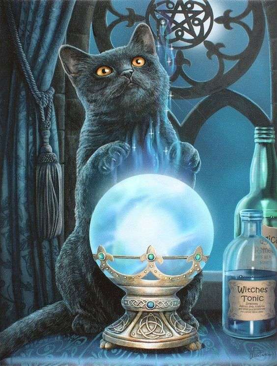 Black Cat Wall Plaque Art Print by Lisa Parker Witches Apprentice Crystal Ball Kitty Wall Plaque