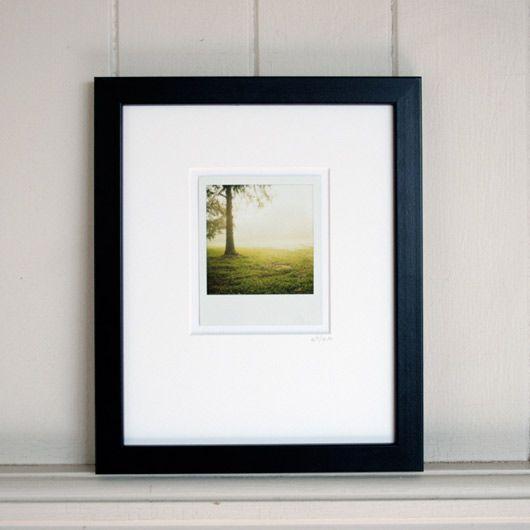 polaroid framed