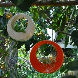 circle pot - like earings for your tree.