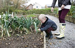 Gardener's To-Do List for May