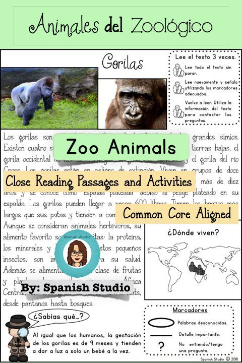 Zoo Animals Spanish Close Reading Close Reading Learning