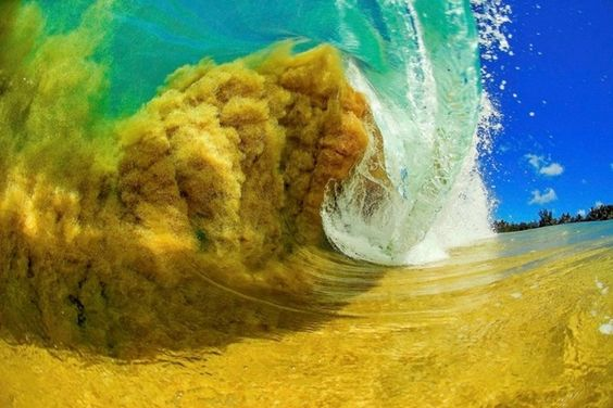 mar y arena.