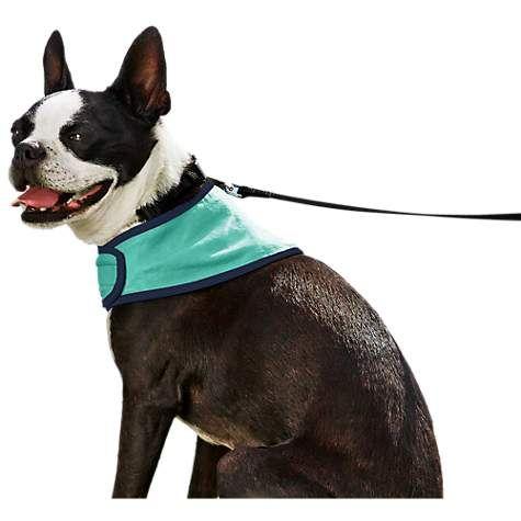 Good2go Cooling Dog Bandana Small Medium Petco Dog Cooling Bandana Dog Life Vest Dog Bandana