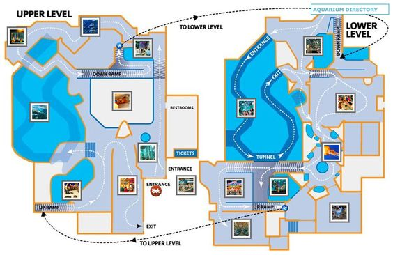 Aquarium the aquarium and maps on pinterest Directions to aquarium