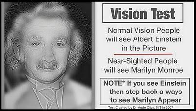 leave it to my weird eyes... I see Albert with one eye and Marilyn with the other. When I look at it with both eyes I can see both!