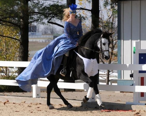 Great costume idea for a black horse.