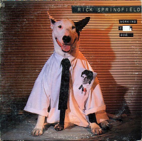 "Rick Springfield - LP -  ""Working Class Dog"" - 1981"