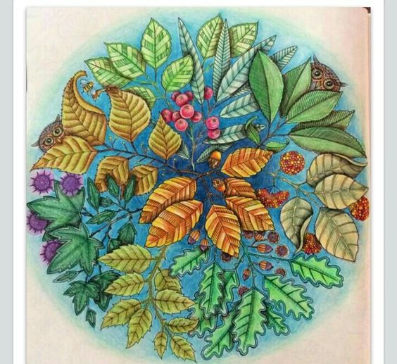 Mandalas And Owl On Pinterest