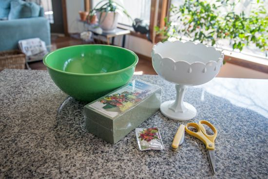 How to: Compote bowl floral arrangement