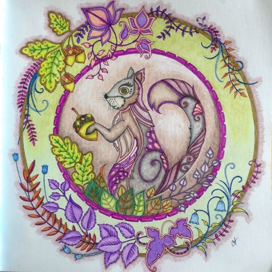 Image Result For Enchanted Forest Coloring Book Map