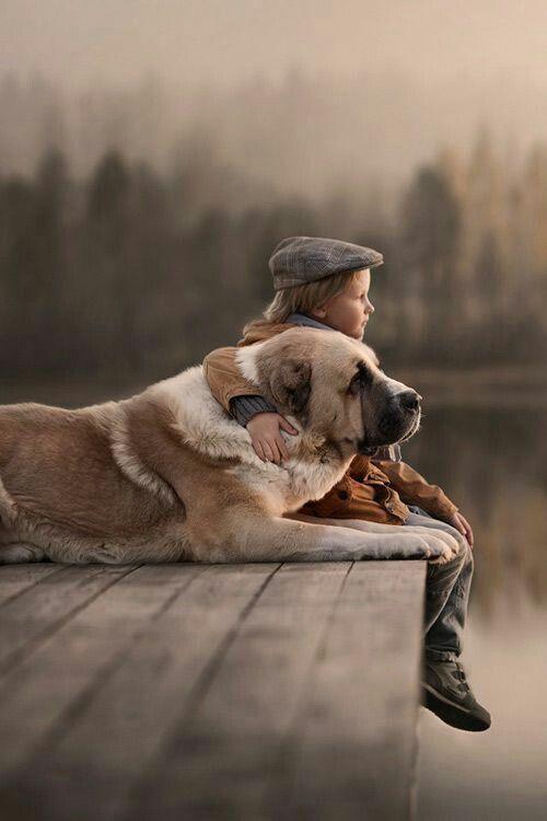 おしゃれでかっこいい犬と少年の壁紙