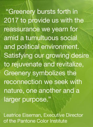 Lee_Eisemann Pantone Color of the Year 2017 GREENERY: