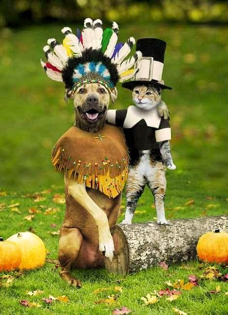 Thanksgiving duo