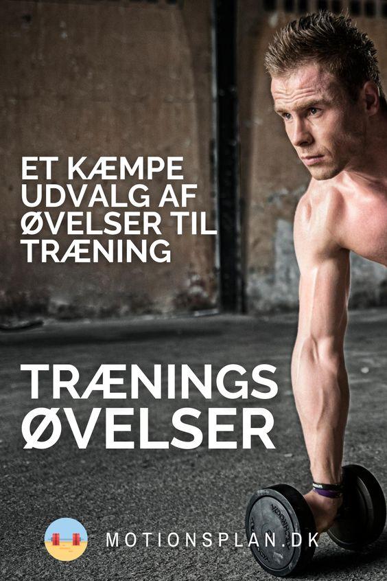 Træningsøvelser: De bedste øvelser til styrketræning 🏋