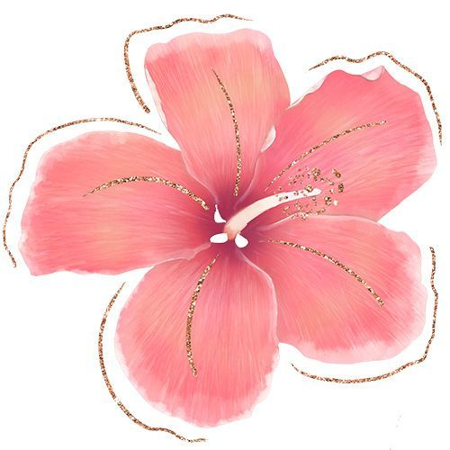 The Truth About Where To Find The Best Tropical Flowers Png Pretty Little Lines Tropical Flowers Illustration Flower Illustration Flower Painting