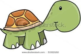 turtle illustration - Pesquisa Google