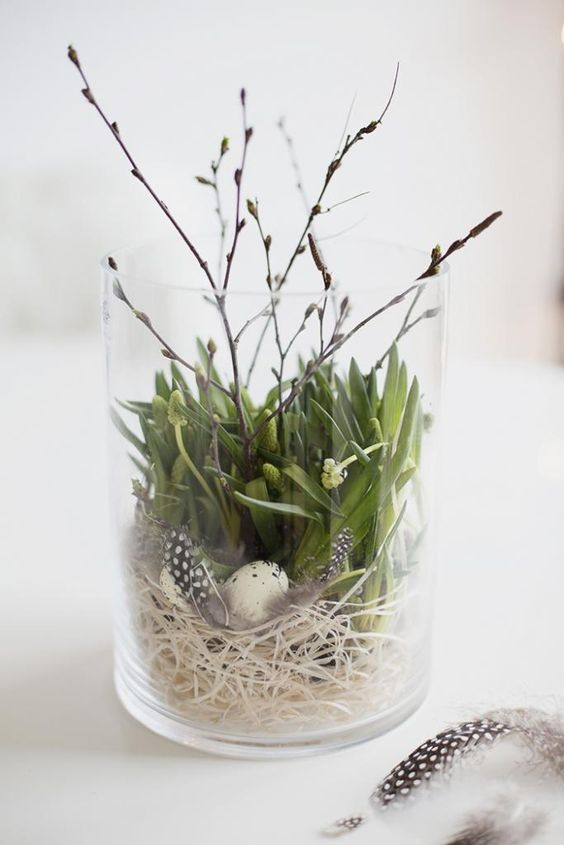 Spring or summer decoration using a wide glass cylinder filled with a bird nest, green plant and twigs. Lovely natural decoration: