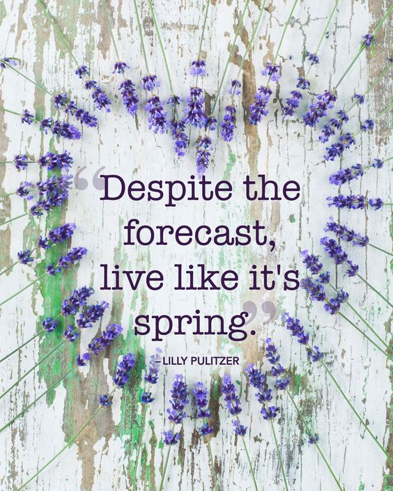 """Despite the forecast, live like it's spring."""