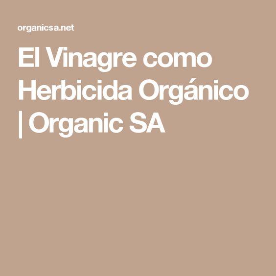 El Vinagre como Herbicida Orgánico | Organic SA