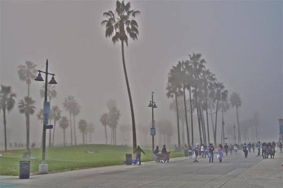 Foggy day Venice.