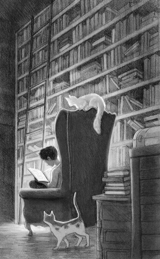 Giant Library #literature #books #reading #reader #art #drawing #illustration #booklovers #bookart #sofa #cat #librarylove #librarylovers