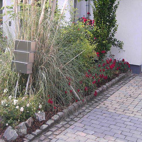sommer-beet mit roten rosen und pampasgras an der seite | garten, Gartenarbeit ideen