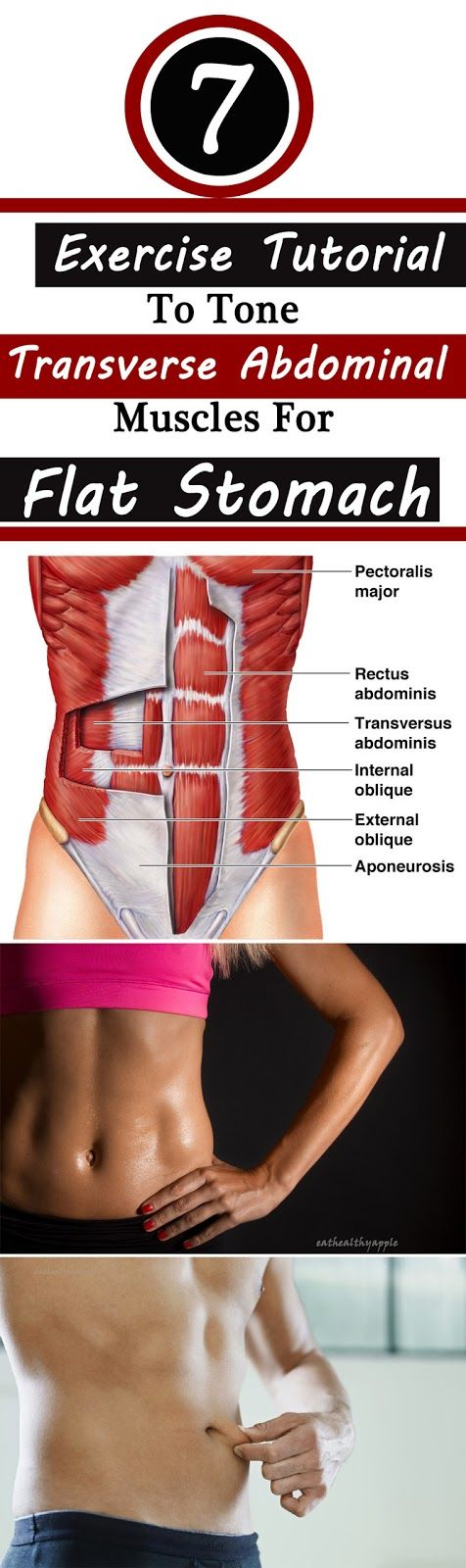 7 Absolutely Working Exercise Tutorial To Tone Transverse Abdominal Muscles For Flat Stomach