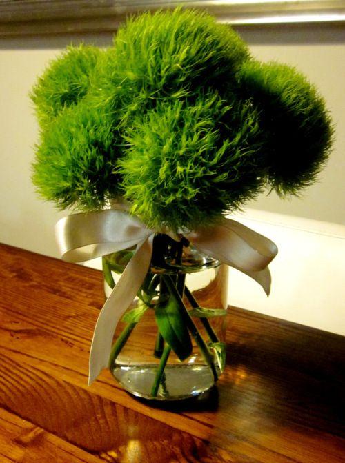 Dianthus barbatus Green Trick | Carnations | Pinterest ...