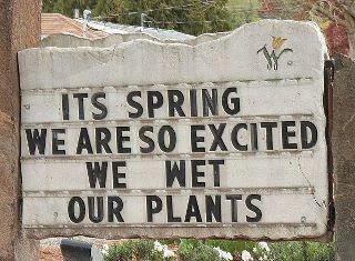 We wet our plants...tee hee!