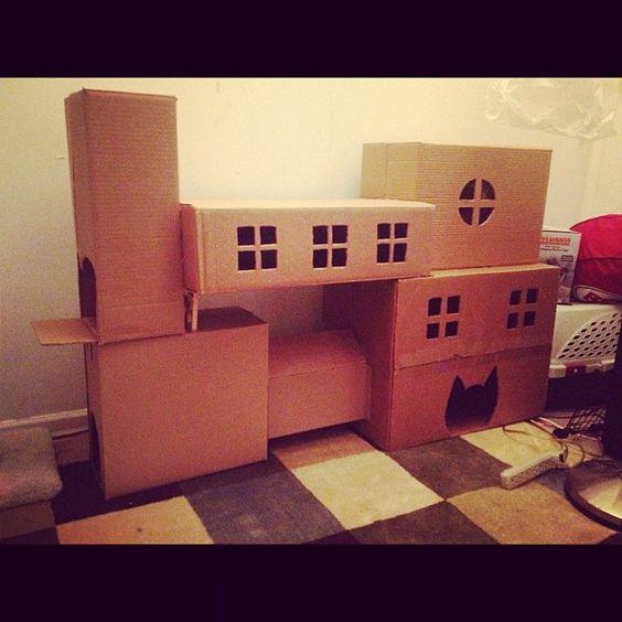 Our cat has a homemade cardboard condo. - Imgur